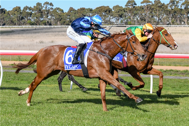 NUMBER ONE STAR winning the  Tac Be Races Ready Maiden Plate.