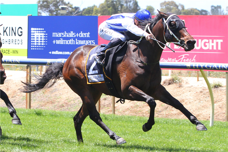 O'REG winning the Shire Of Strathbogie Mdn Plate.