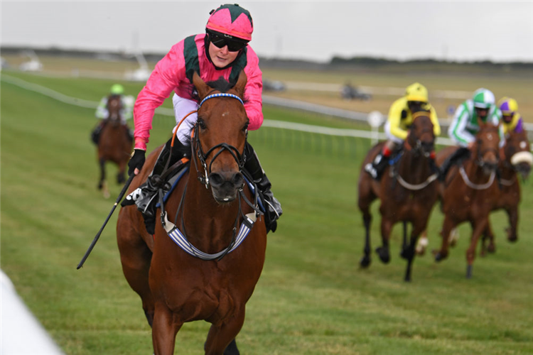 OXTED winning the Betway Abernant Stakes in Newmarket, England.