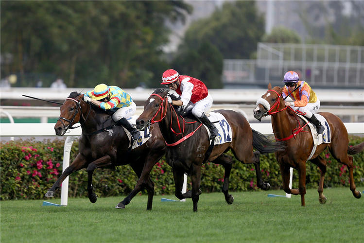 PICKEN winning the Nam Shan Hcp (C3)