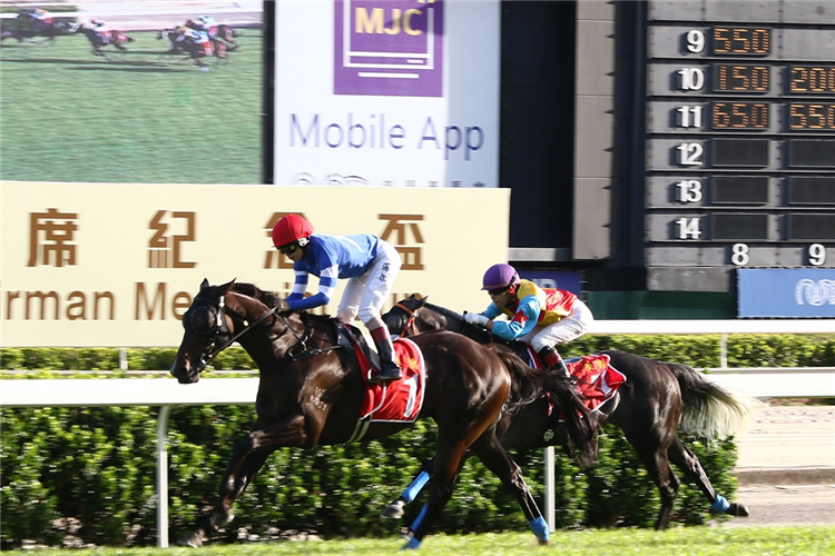 SACRED CAPITAL winning the CHAIRMAN MEMORIAL CUP (GROUP 1)
