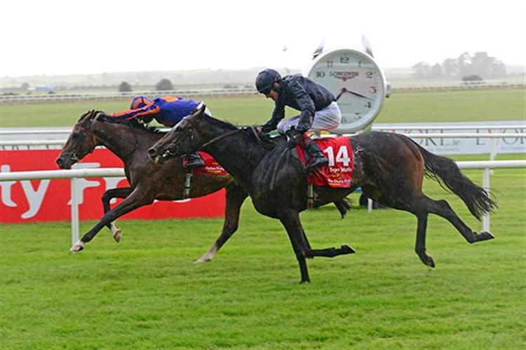 SANTIAGO winning the Irish Derby.