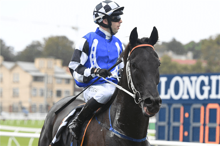SPECIAL REWARD winning the Cellarbrations Southern Cross Stakes.