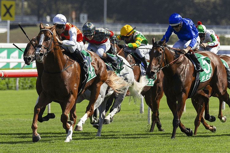 STANDOUT winning the Expressway Stakes.