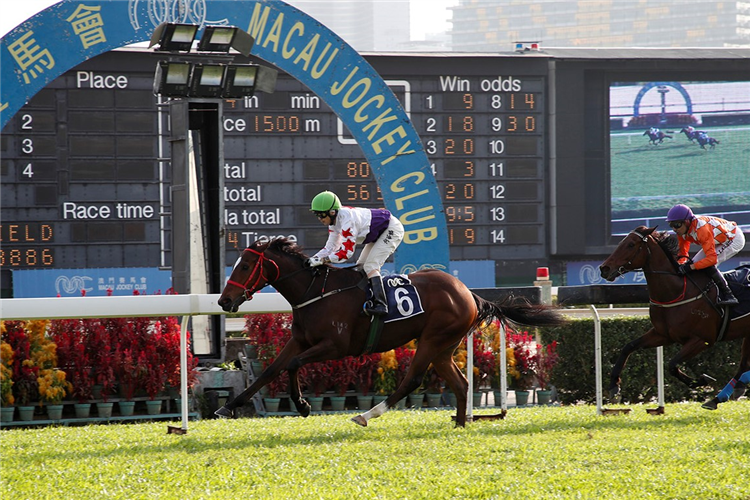 STAR OF YIU CHEUNG winning the A LIST STUD STAKES