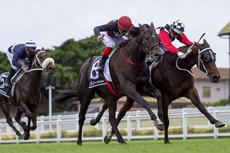 SUPERGIANT winning the Gunsynd Classic.