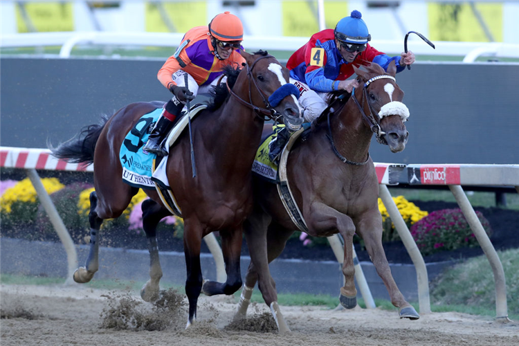 SWISS SKYDIVER (R) winning the Preakness Stakes at Pimlico in Baltimore, Maryland.