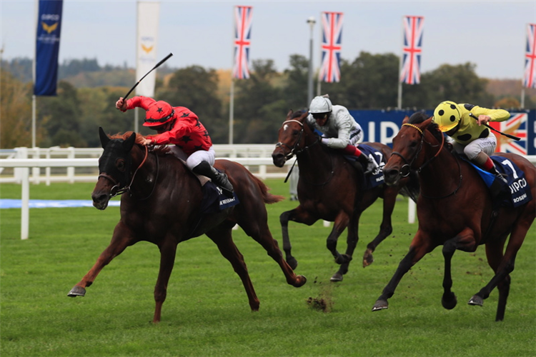 THE REVENANT winning the Queen Elizabeth II Stakes (Group 1) (Sponsored By Qipco) (Str)