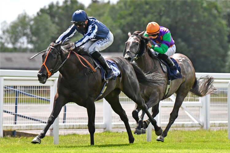 THEOTHERSIDE winning the Download The At The Races App Handicap at Windsor in England.