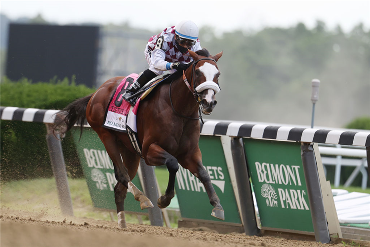 TIZ THE LAW winning the Belmont Stakes at Belmont Park in New York.