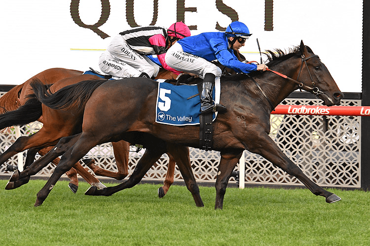 VALAQUENTA winning the Quest Moonee Valley Mdn Plate