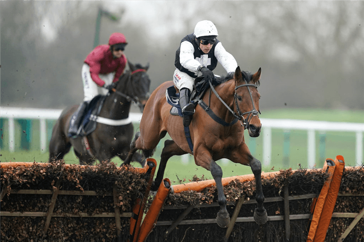 WEST CORK winning the Pertemps Network Novices' Hurdle in Huntingdon, England.