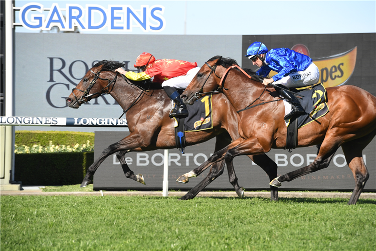 WILD RULER winning the Schweppes Heritage Stakes.