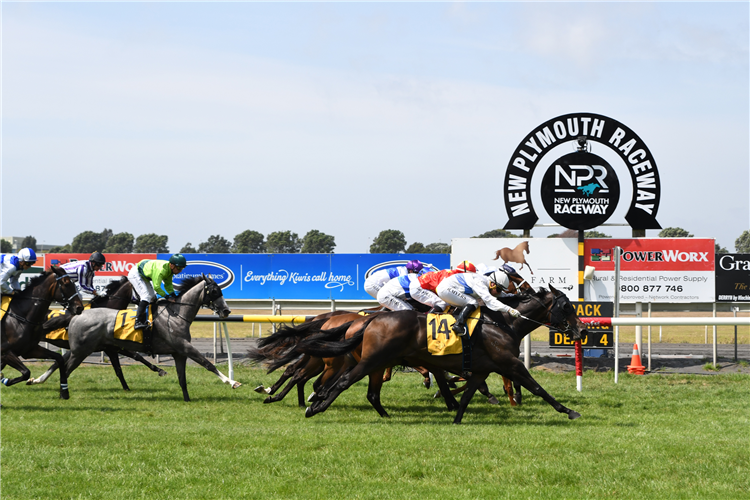 A public consultation is underway regarding the lease of New Plymouth Raceway.