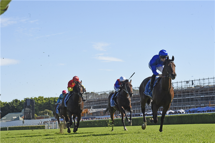 Hilal finishes second behind Anamoe in the Sires'