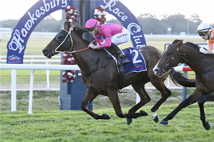 ARCHEDEMUS winning the Evergreen Turf H'bury Gold Cup at Hawkesbury in Australia.