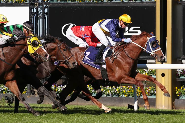 BLUSHING TYCOON winning the Racing.Com Plate at Flemington in Australia.
