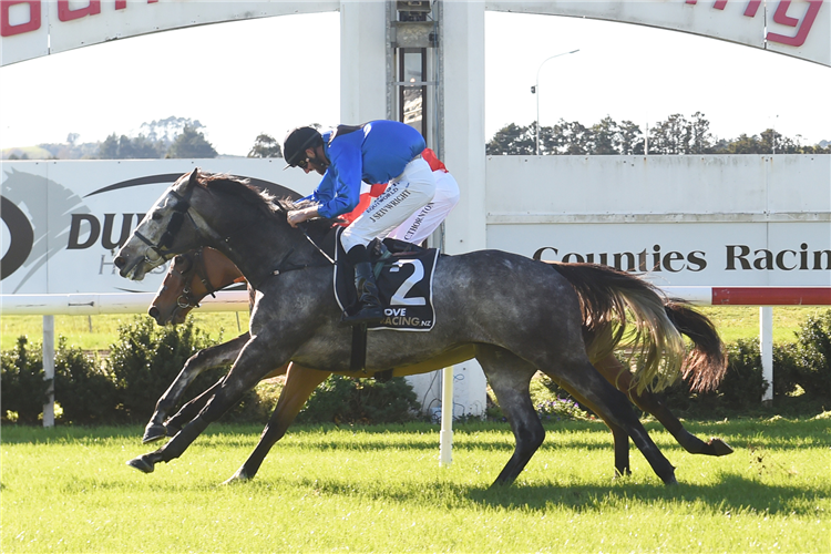 Charred (outside) will contest the Avondale Sunday Markets (2100m) on Wednesday.