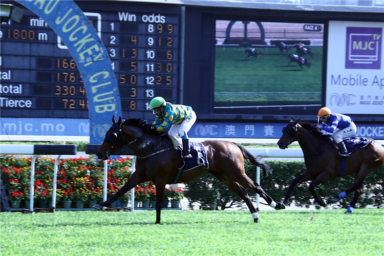 CIRCUIT MILES winning the THE GUILIN