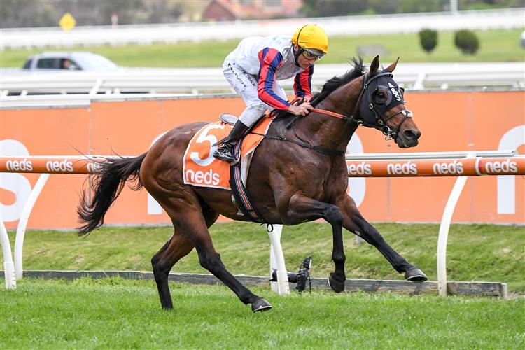 DELPHI winning the Herbert Power Stakes at Caulfield in Australia.