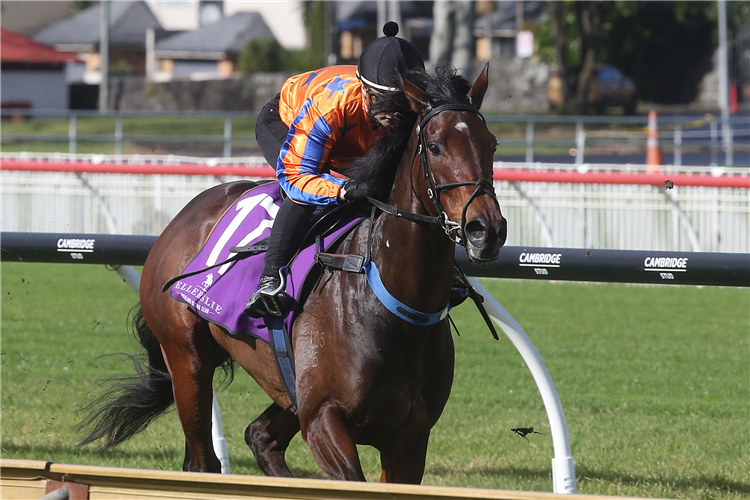Entriviere winning her 900m trial at Ellerslie on Tuesday.