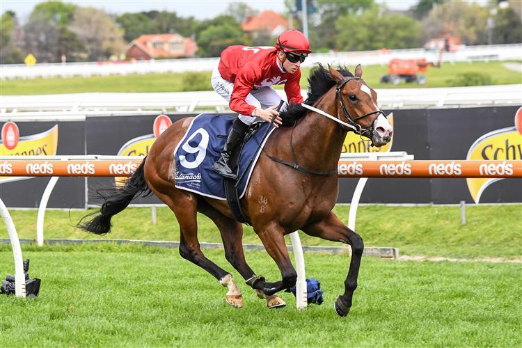 EXTREME WARRIOR winning the Blue Sapphire Stakes in Caulfield, Australia.