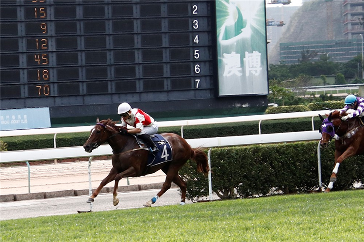 FORTUNE LADY winning the THE TORONTO (Div 1)