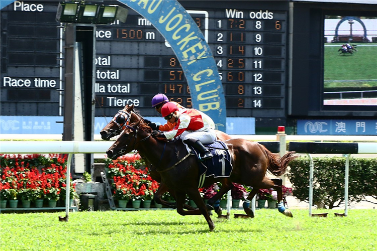 FORTUNE LADY (out side) winning the THE SENDAI (Div 2)