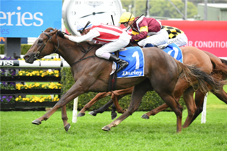 FOUR MOVES AHEAD winning the Tea Rose Stakes at Randwick in Australia.