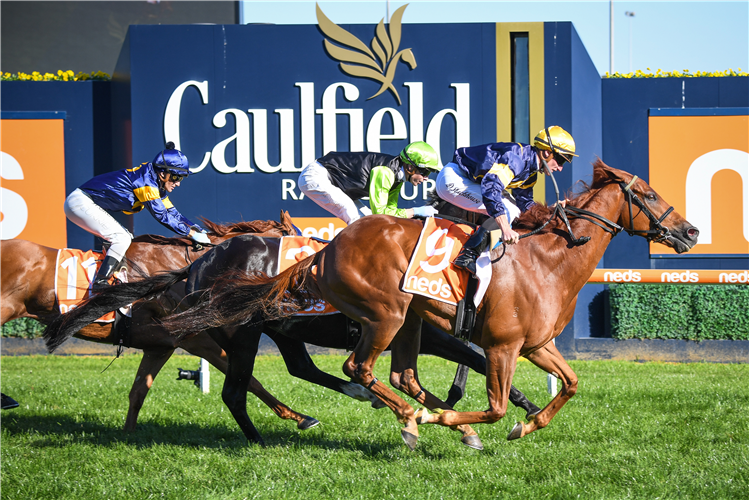 HANG MAN winning the Easter Cup at Caulfield in Australia.