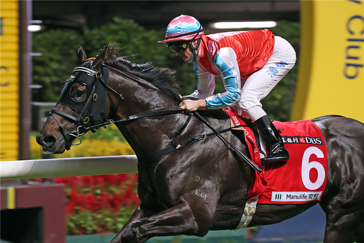 HARMONY N BLESSED winning the Clementi Hcp (C3)