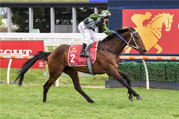 INCENTIVISE winning the Caulfield Cup at Caulfield in Australia.