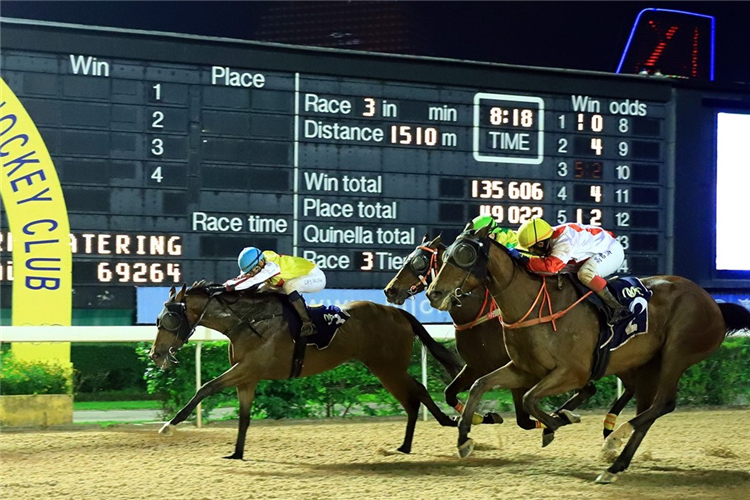 KING OF GLAMOUR winning the THE BANGALORE