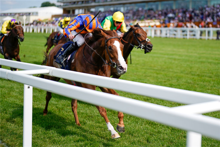 LOVE winning the Prince Of Wales's Stakes at Royal Ascot in England.