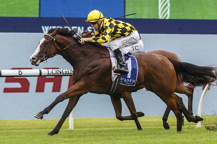 MALLORY winning the Widden Stakes