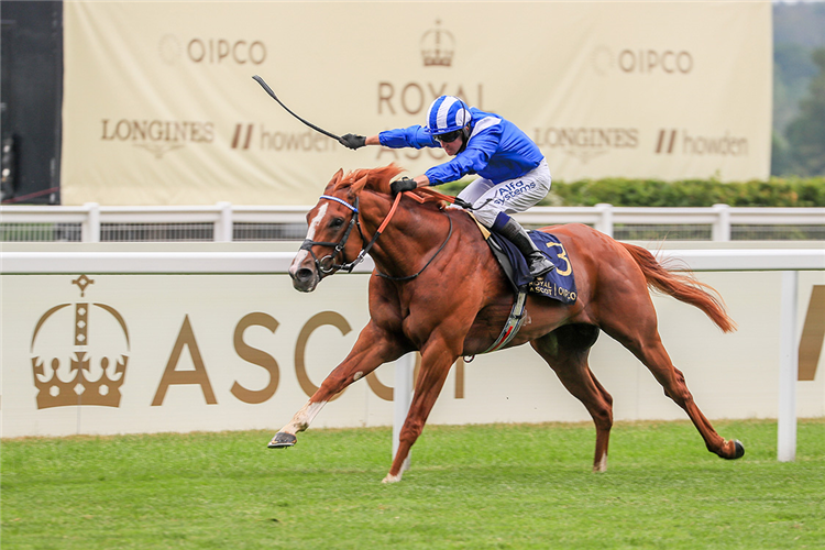 MOHAAFETH winning the Hampton Court Stakes (Group 3)