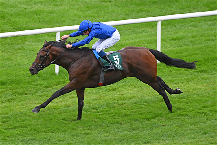 NATIVE TRAIL winning the Vincent O'Brien National Stakes.