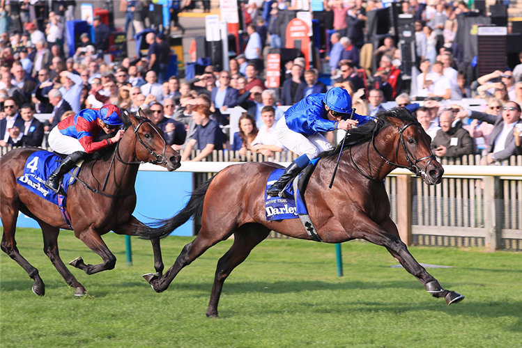 NATIVE TRAIL winning the Dewhurst Stakes.