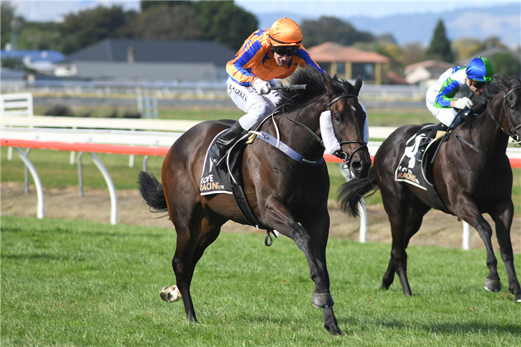 ON THE BUBBLES winning the Manawatu Sires Produce Stakes.
