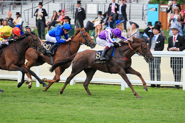 PEROTTO winning the Britannia Stakes (Heritage Handicap) (Str)