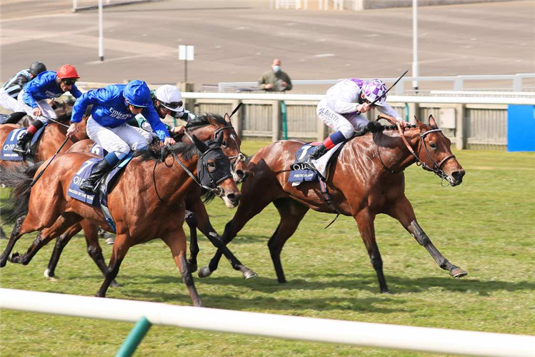 POETIC FLARE winning the 2000 Guineas.