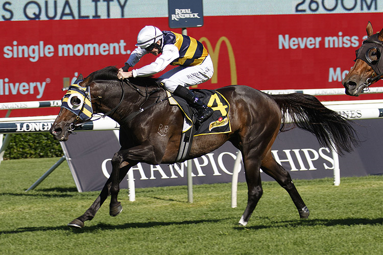 QUICK THINKER winning the Schweppes Chairman's Qlty