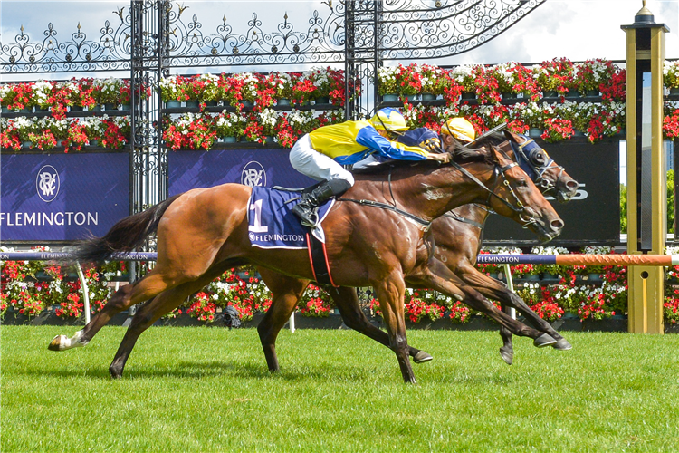 RIDING THE WAVE winning the Summer Twilight Series Hcp at Flemington in Australia.