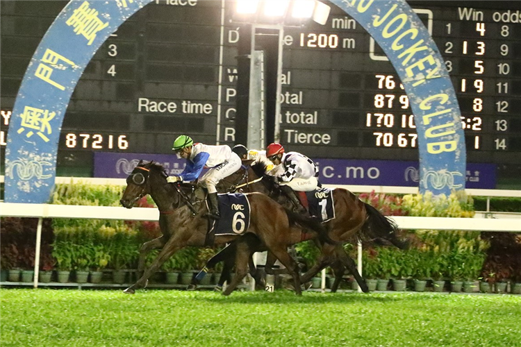 RIVER APPLAUSE winning the THE JINGZHOU