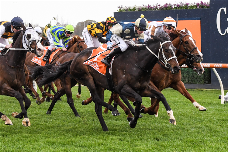 SIERRA SUE winning the Sir Rupert Clarke Stakes at Caulfield in Australia.