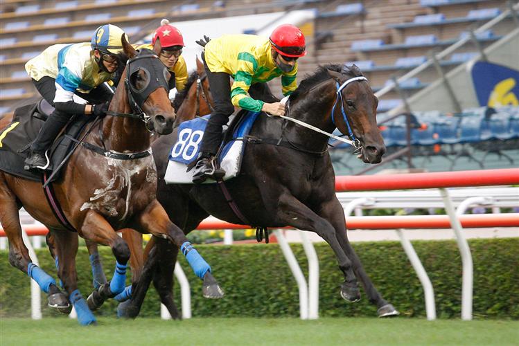 Sky Darci (red cap) trials under Joao Moreira.
