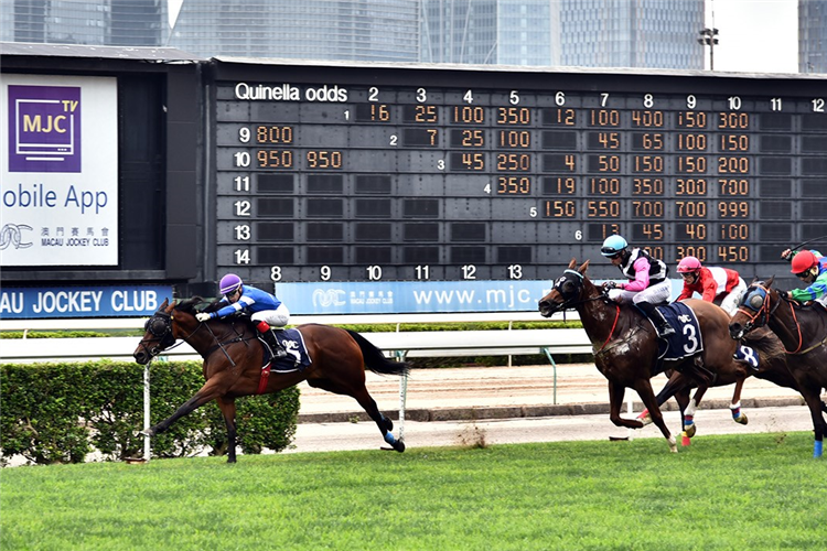 SNOW STORM winning the THE HUANGSHI