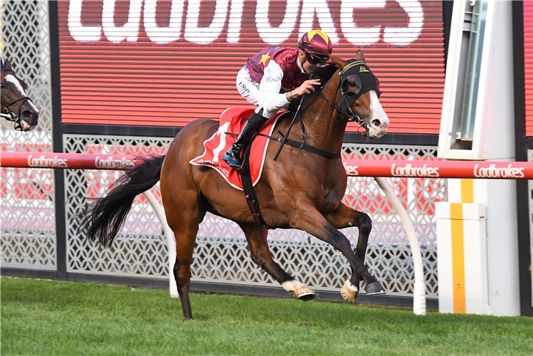 STREETS OF AVALON winning the Australia Stakes at Moonee Valley in Australia.