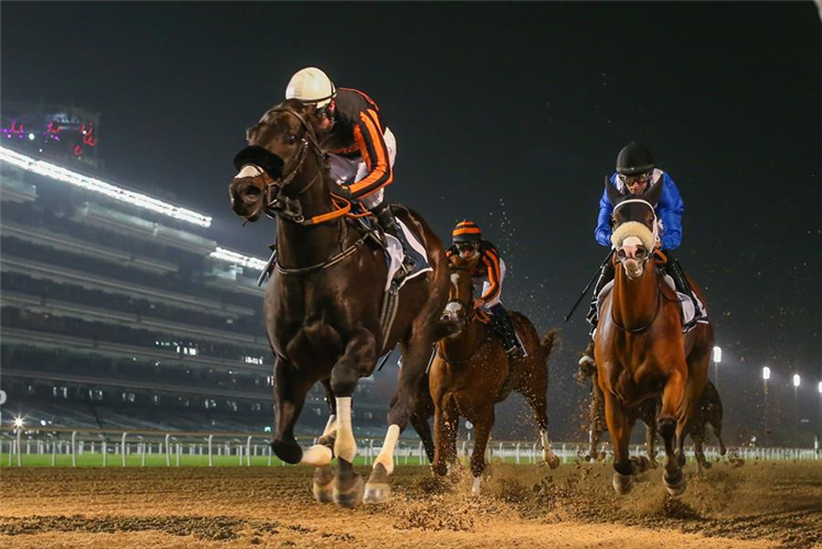 Switzerland winning the G3 Dubawi at Meydan