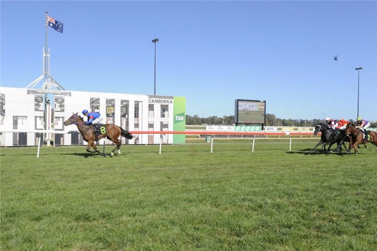 Tejori was a class above in the XXXX Gold Class 1 Handicap at Thoroughbred Park on 24 April 2020